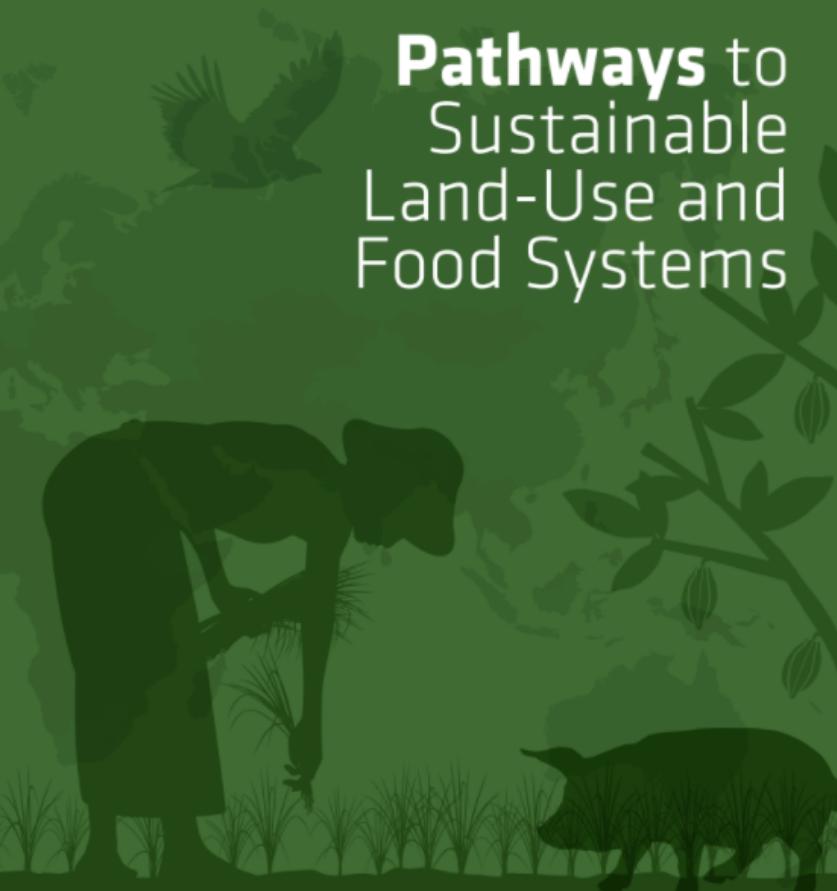 FABLE Report 2020: Wege zu nachhaltigen Landnutzungs- und Ernährungssystemen