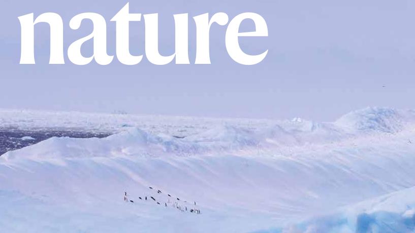 Meeresspiegelanstieg: Stabilitäts-Check der Antarktis offenbart enorme Risiken