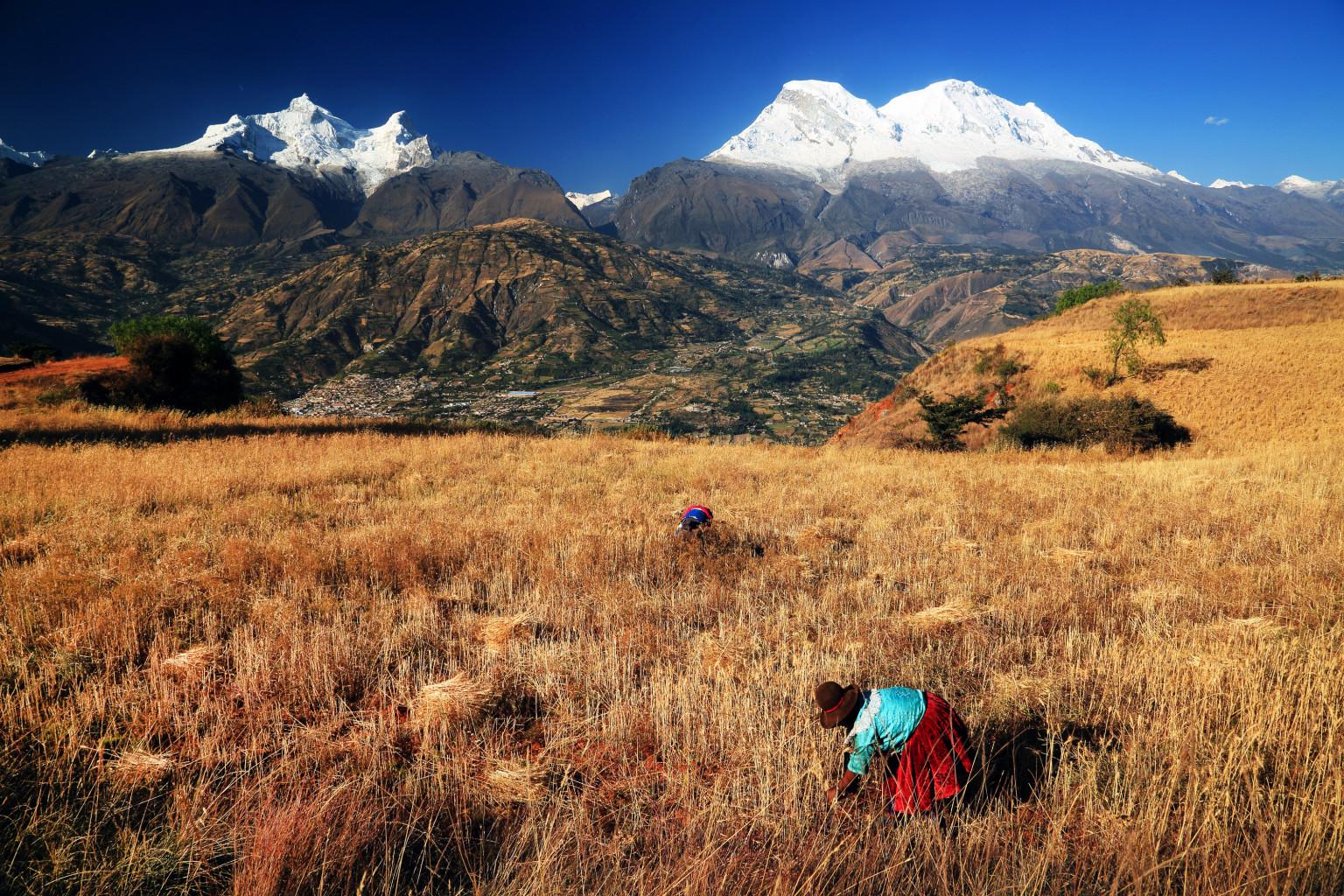 Von Dürren zu Überschwemmungen: Klimawandel und Migration in Peru