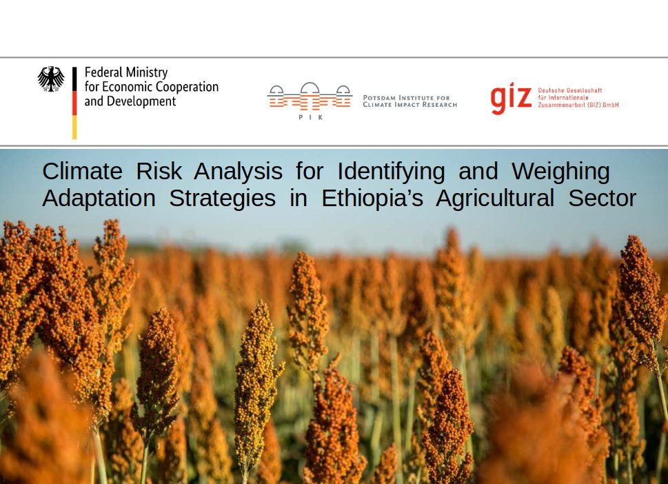 Launch of climate risk analysis for Ethiopia's agricultural sector