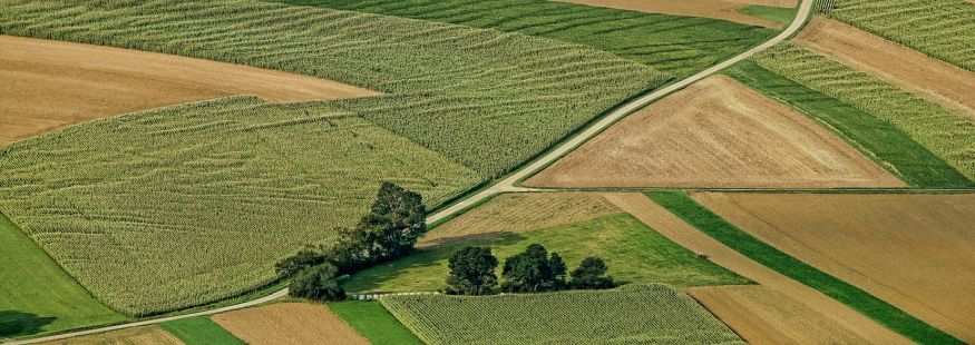 Land Use and Resilience