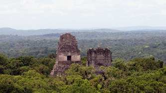 Rise and fall of the Maya in response to climate change