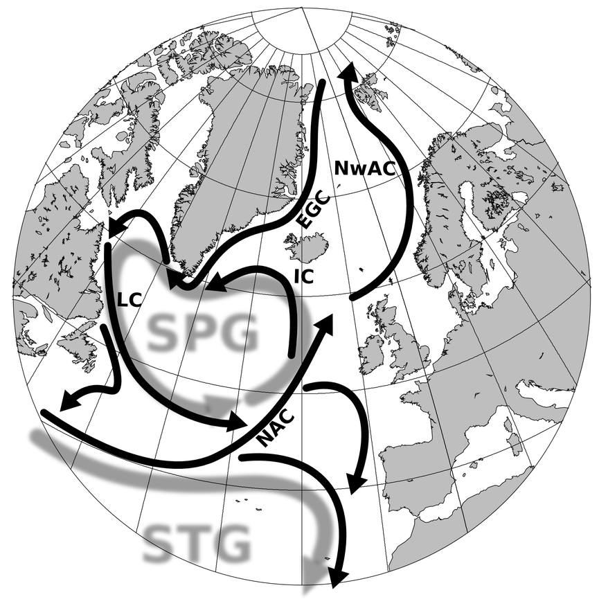 Atlantic surface circulation qualifies as 'tipped' element