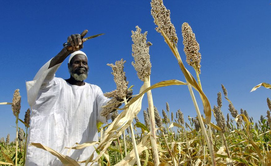 Hotspots of climate change impacts in Africa: making sense of uncertainties