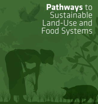 FABLE Report 2020: Pathways to sustainable land-use and food systems