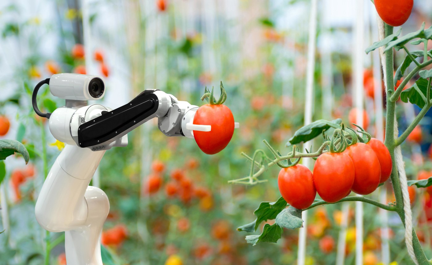 From artificial meat to fine-tuning photosynthesis: Food System Innovation – and how to get there