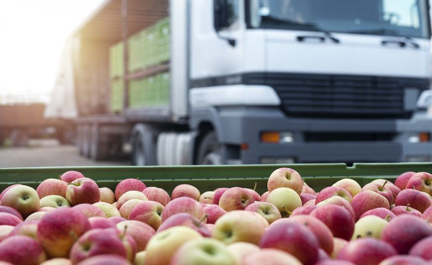 From avocados to apples: Producing food closer to cities could help reduce climate emissions