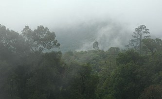 Giant see-saw of monsoon rains detected