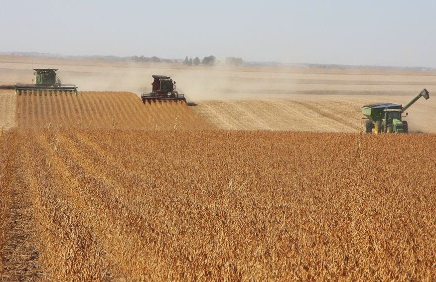 Harvests in the US to suffer from climate change