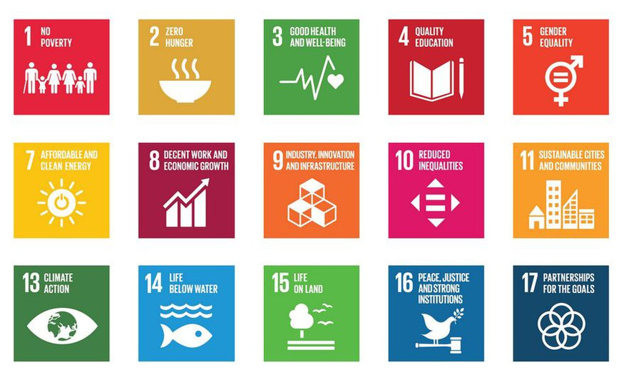 Mix it: Policy combination needed to achieve climate targets along with sustainable development goals