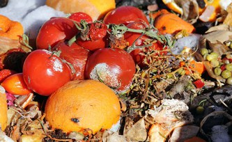 Reducing food waste could help mitigate climate change