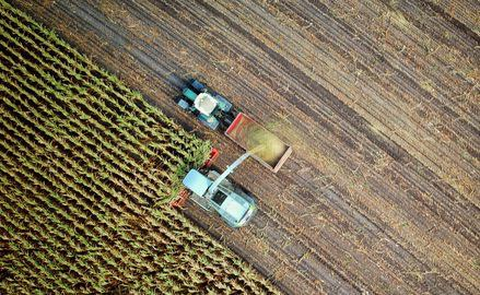 Regional nuclear war a risk for global food security
